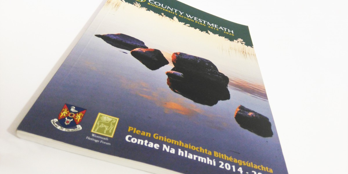 Front Cover of Westmeath Biodiversity Action Plan by Mind's I Graphic Design